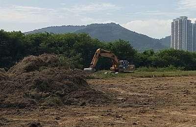 Land clearing Aldie, Leesburg, Middleburg, VA