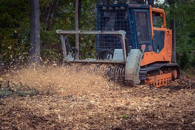 Forestry mulching in Aldie, Leesburg, and Middleburg, VA