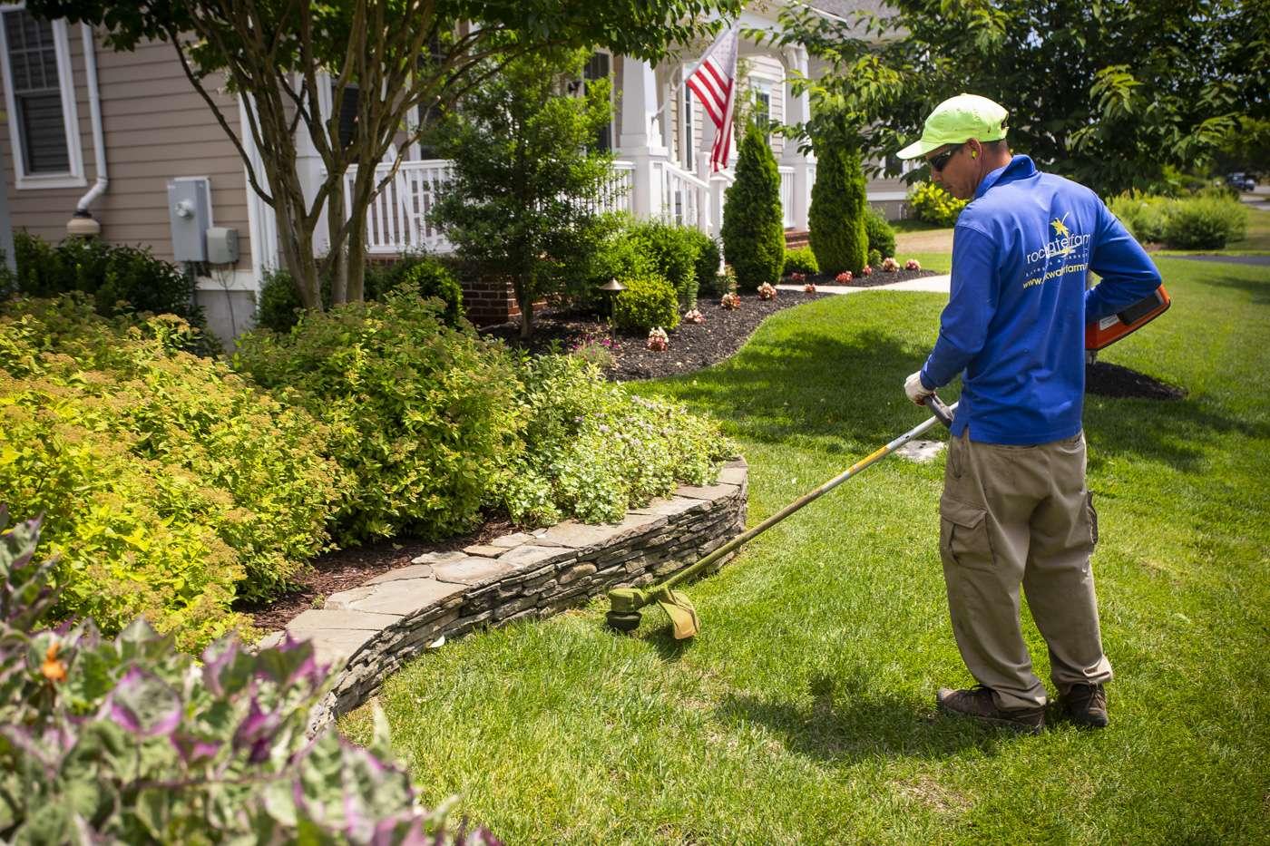 Landscape maintenance technician in lawn