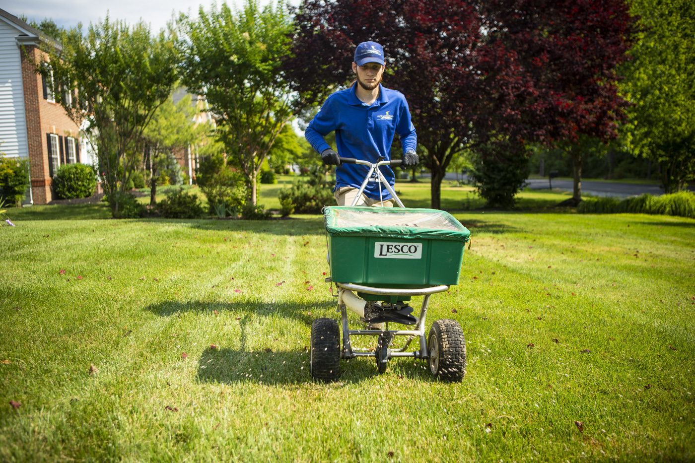 lawn care technician fertilizing lawn
