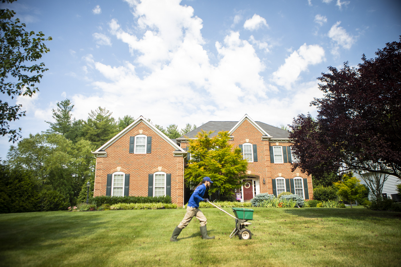 lawn technician fertilizing lawn in northern Virginia