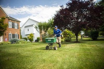 lawn-technician-granular-fertilizer-6