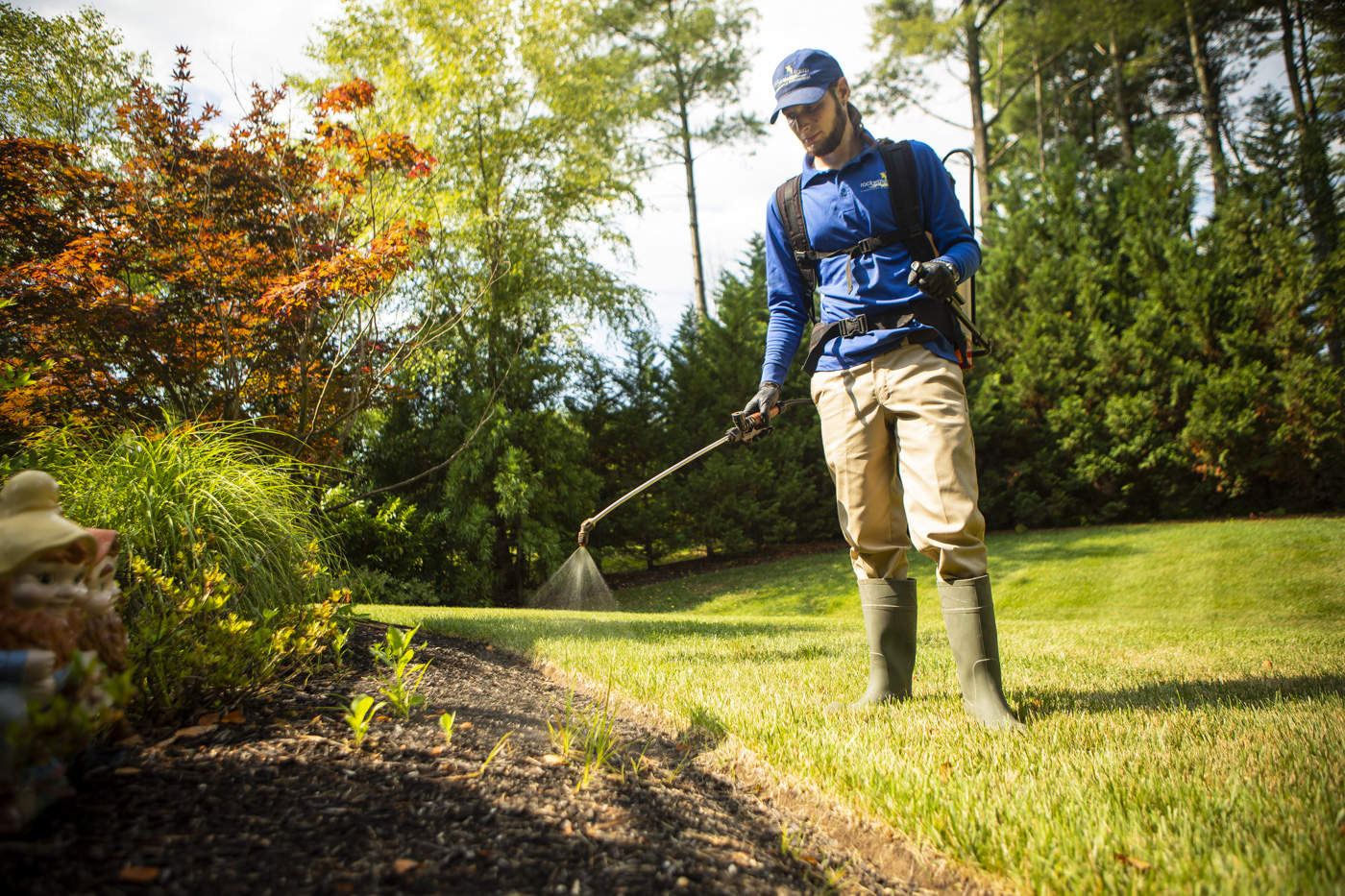 lawn care service technician spraying lawn in Northern Virginia