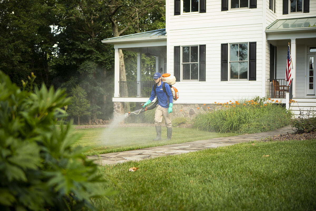 professional mosquito control spray in Northern Virginia lawn