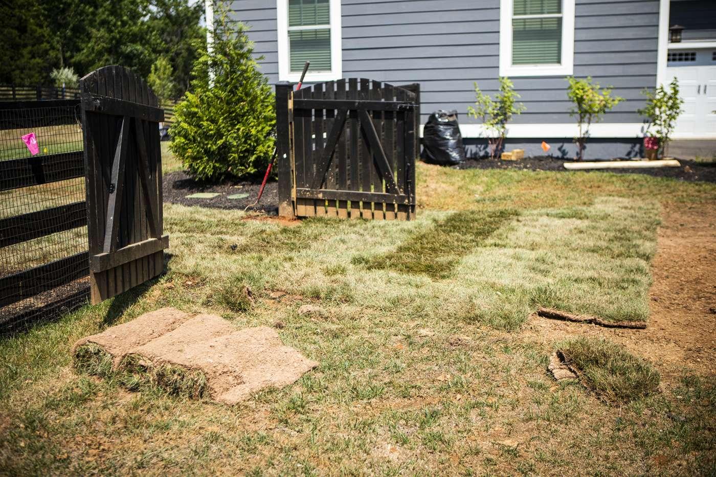 lawn sod installation
