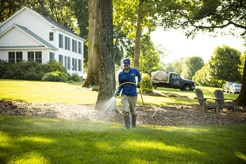 lawn care technician spraying lawn in Haymarket, VA