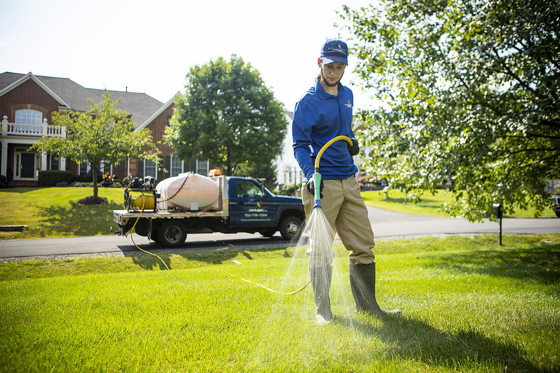 Rock Water Farm lawn care technician spraying lawn