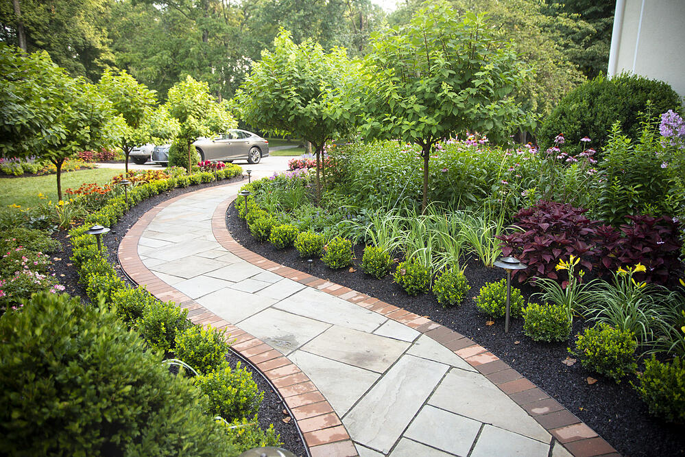 Walkway with planting, shrubs, and trees