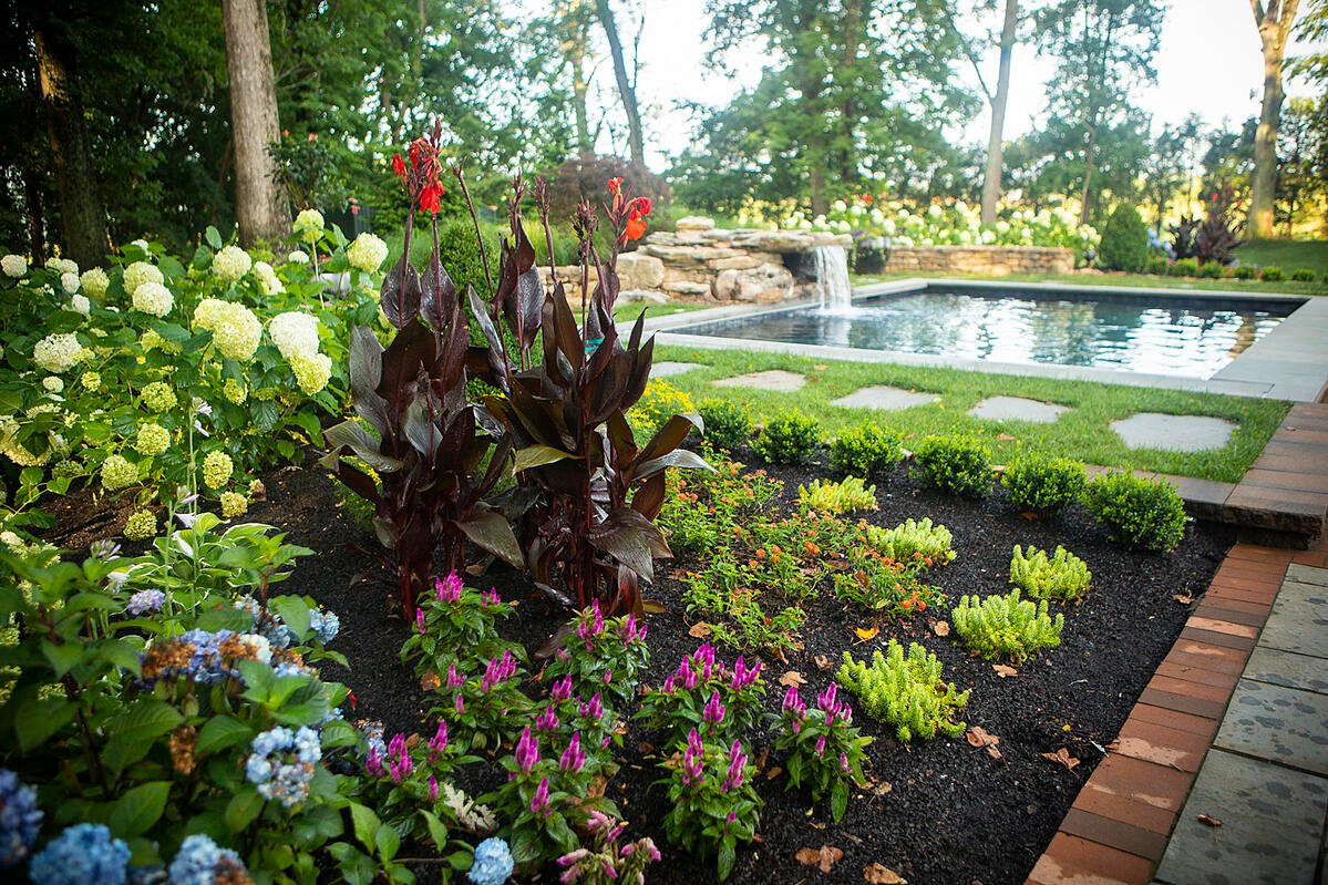 Flowers and plants in Virginia landscape