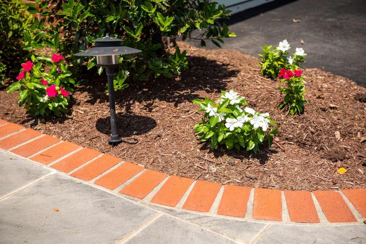 front walkway planting lighting 1