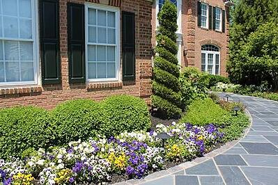 serious front yard landscaping ideas that will turn heads