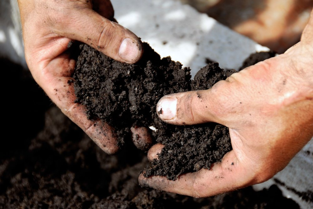 Hand holding soil for lawn soil test