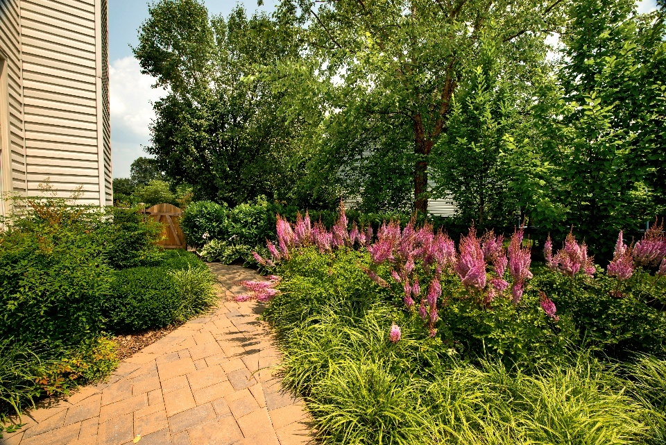 well-maintained residential landscape in virginia