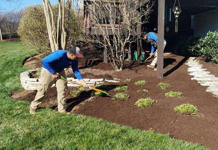 landscape maintenance team mulching
