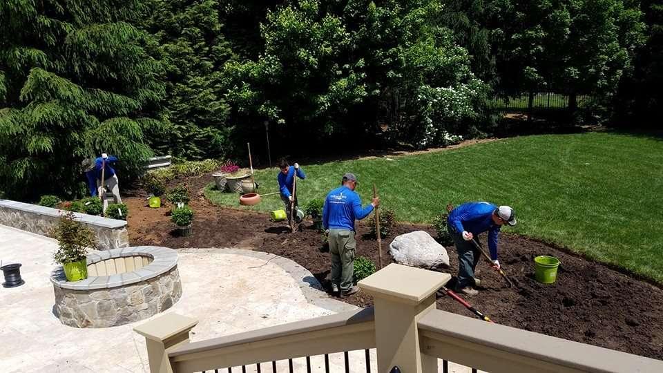 Landscape shrub and perennial installation