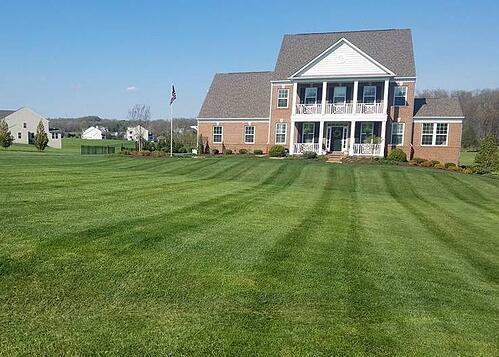 lawn with weekly mowing landscape maintenance