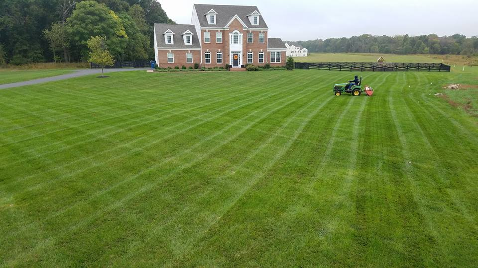Core Aeration lawn care services being performed