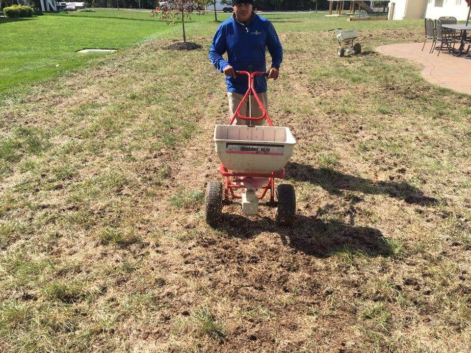 lawn technician seeding lawn in Haymarket, VA
