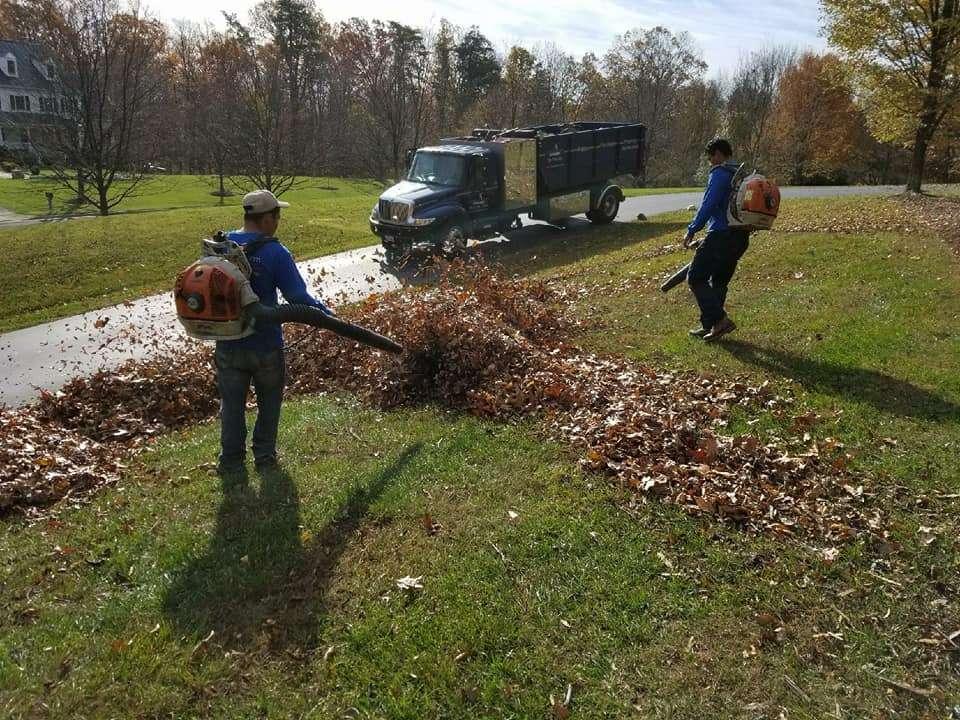 leaf removal in spring cleanup