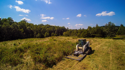 Forestry mulching and bush hogging in Aldie, Leesburg, & Middleburg, VA