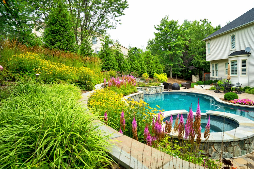 pool-walls-plantings-patio