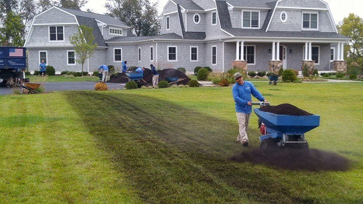 Professional topdressing lawn