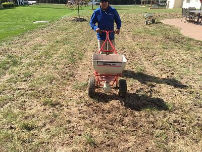 Lawn aeration, topdressing, and seeding services make for a beautiful lawn.