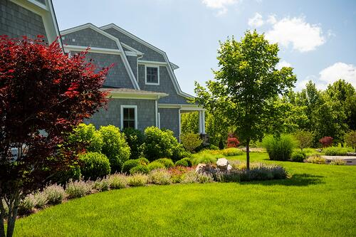 well-maintained landscape in northern Virginia
