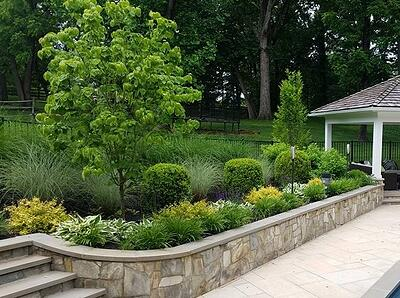A shrub trimming guide with landscaping tips and questions to ask a prospective service.