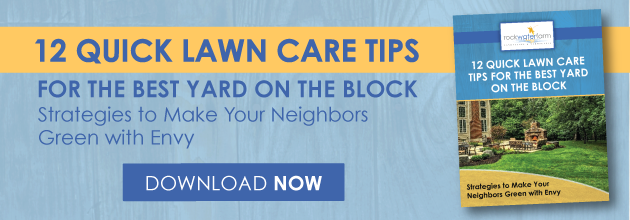 Lawn care tips for Ashburn, Aldie, and Leesburg, VA