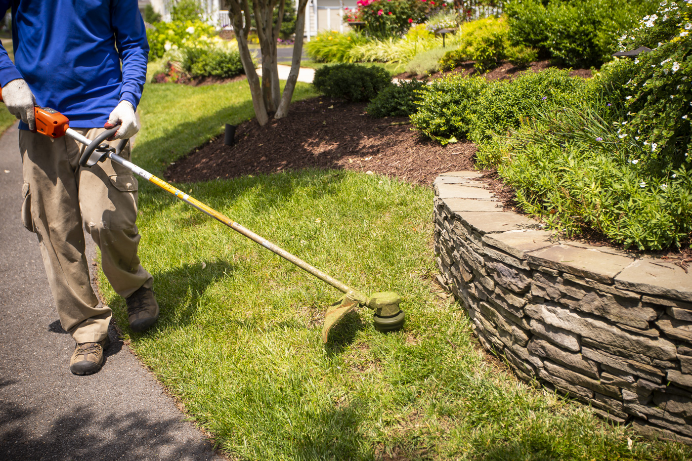 How to Compare Lawn Care Services, Prices, & Programs in South Riding, VA