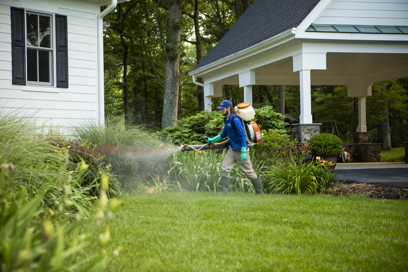 Tick & Mosquito Spraying Near Me: How to Hire the Right Company in Ashburn, Leesburg, or Aldie, VA