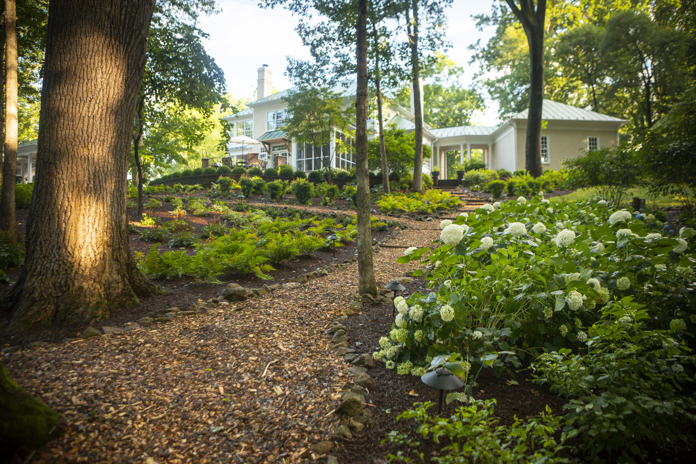 How Does a Mild Winter in South Riding, VA Impact Your Landscaping?
