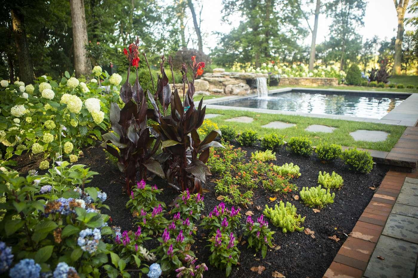Virginia Flower Planting Schedule: When to Plant Annuals, Perennials, & Bulbs