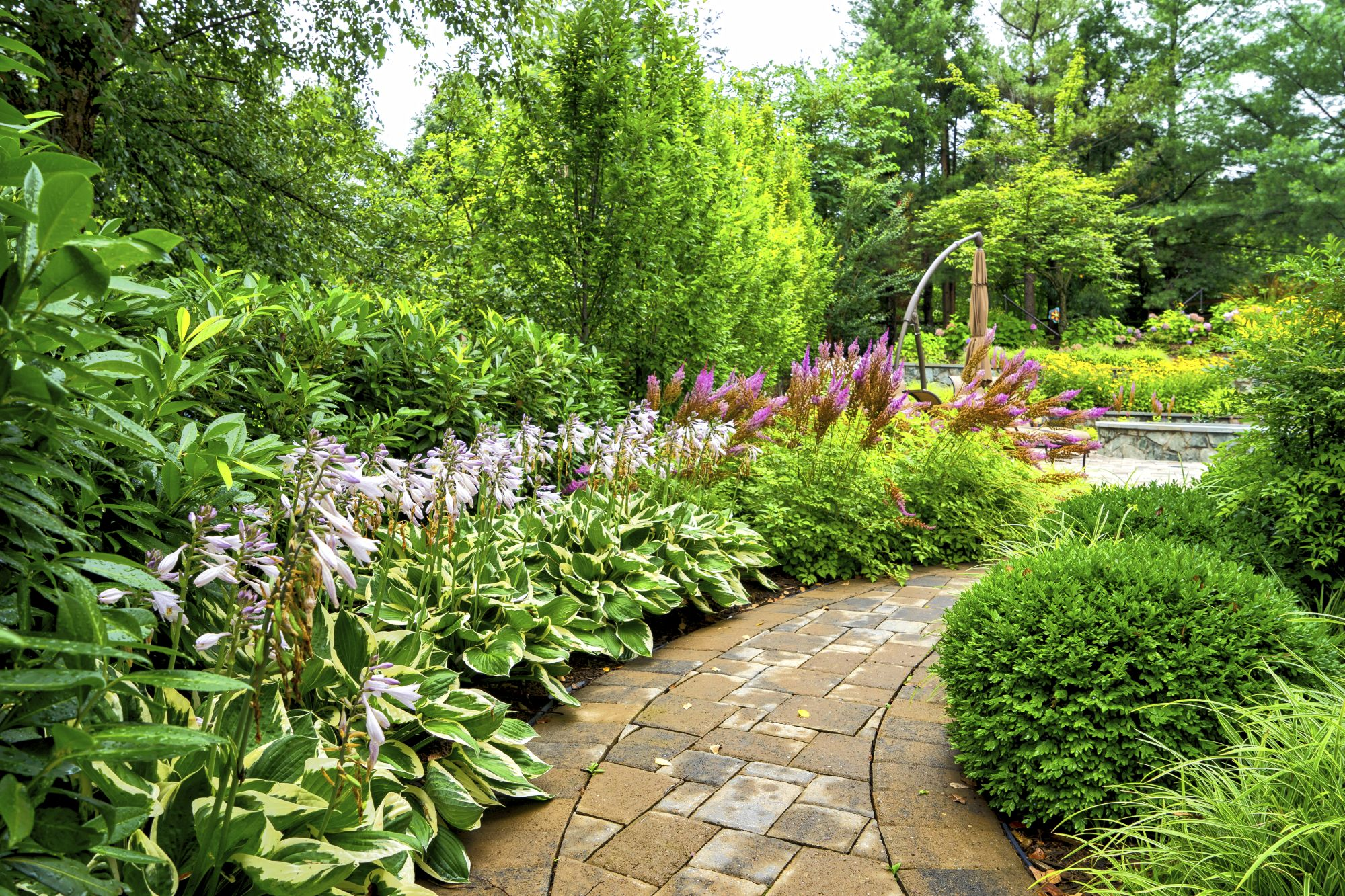 Reputable Landscaping Companies vs. Fly-By-Night Landscapers: 11 Red Flags to Watch For