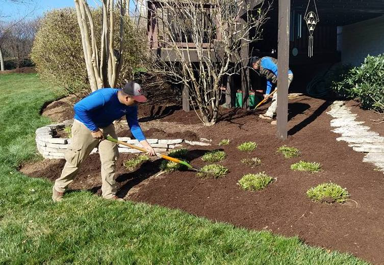 6 of the Best Low-Maintenance Landscaping Tips for South Riding, Haymarket, & Ashburn, VA