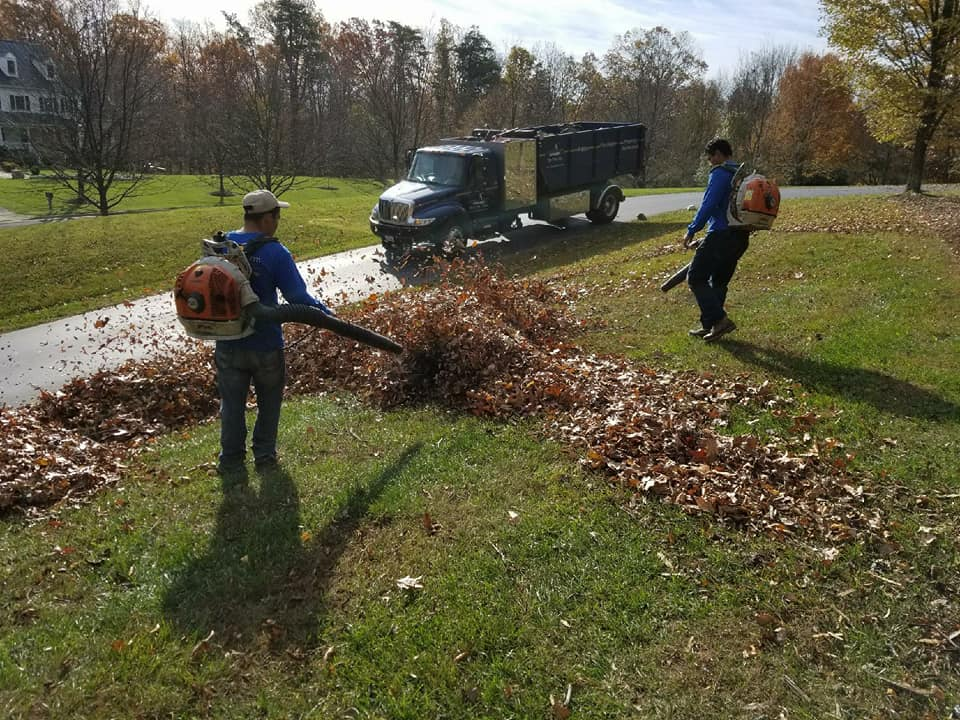 Northern Virginia Fall Landscaping Checklist: Tips to Cleanup and Reduce Costs
