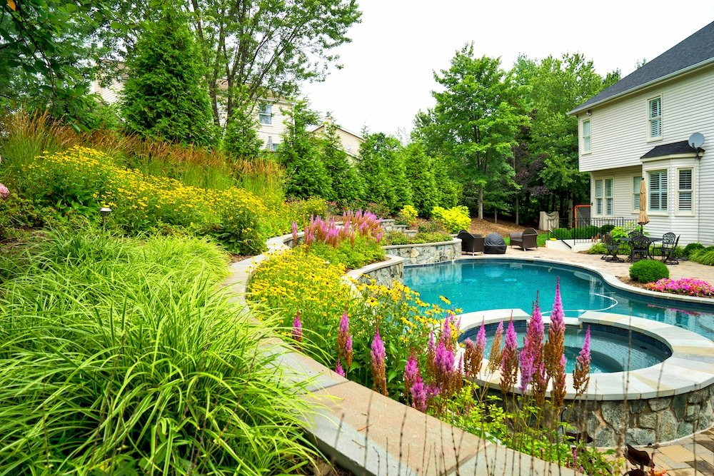 Landscape Design Ideas for Your Pool: Plants for Poolside Perfection